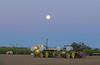 Pepper Planting Super Moon-