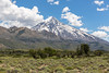 Lanin National Park Tom_N5A7057