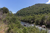 Lanin National Park Tom_N5A7049
