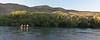 Chimehuin River Camping_N5A6442