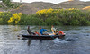 Chimehuin River Camping_N5A6448