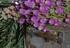 TSL Flower Agrranging-0611