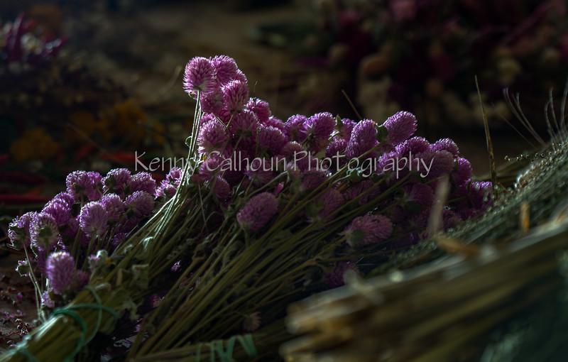 TSL Flower Agrranging-0629