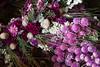 TSL Flower Agrranging-0646