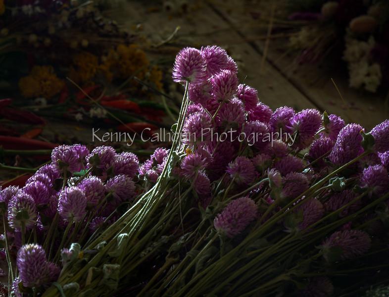 TSL Flower Agrranging-0627