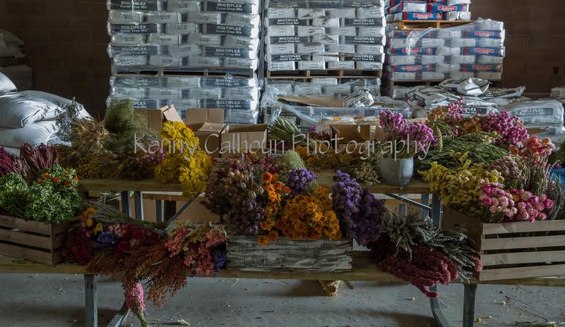 TSL Flower Agrranging-0593
