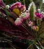TSL Flower Agrranging-0623