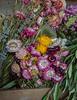 TSL Flower Agrranging-0573