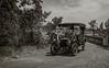 Yolo Land & Cattle Car Tour_N5A2514-Edit-2