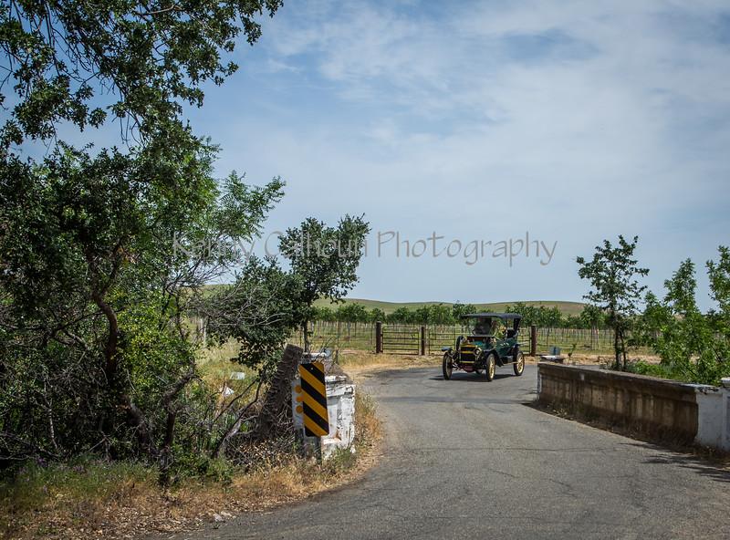 Yolo Land & Cattle Car Tour_N5A2494