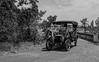 Yolo Land & Cattle Car Tour_N5A2514-Edit