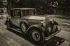 Yolo Land & Cattle Car Tour_N5A3194-Edit