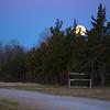 Moon Over Pearl Lane