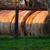 Hay Supply