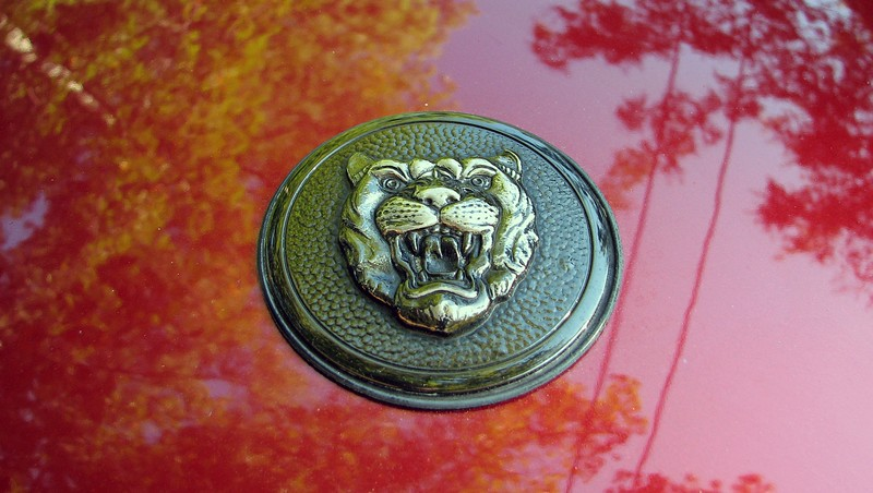 Jaguar hood badge.