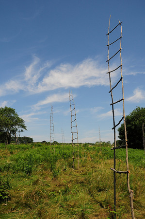 """""""Thirteen Orphan Field Ladders"""" (wood and wire, 2009) by Jim Coates.   Photo by Andy Wilson."""