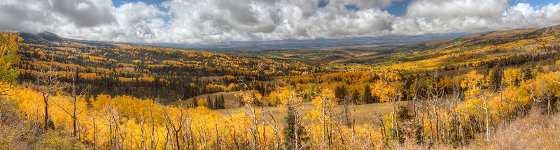 Fall Colors South of Chama _Panorama