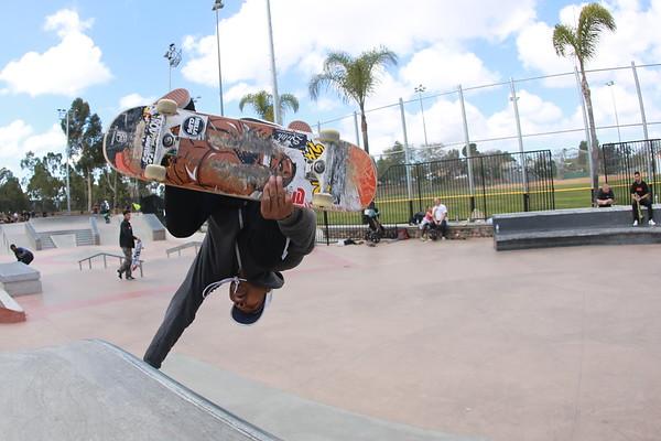 Skateboard March 2018