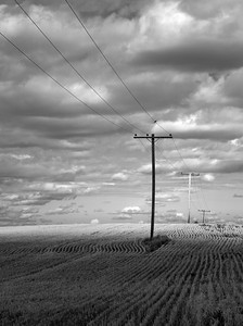 Cut Field and Power Lines Saskatchewan