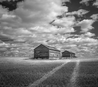 Barns, Tracks and Clouds Saskatchewan