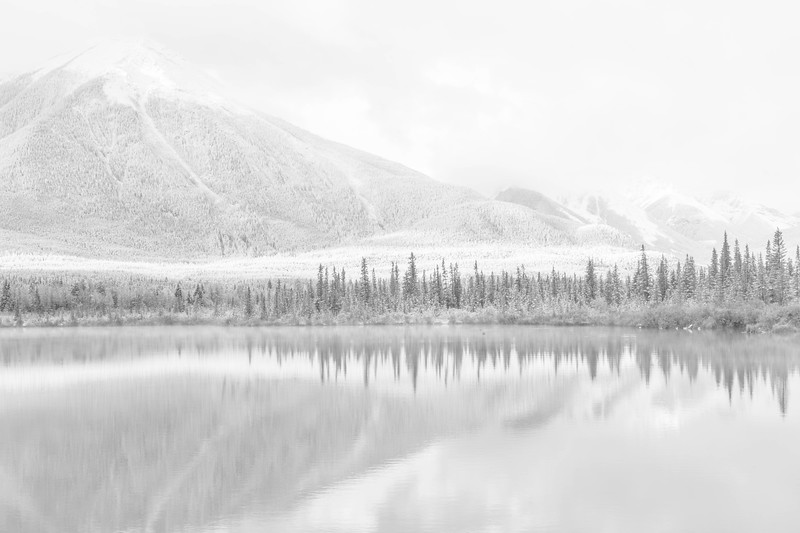 Reflections Vermilion Lakes Banff