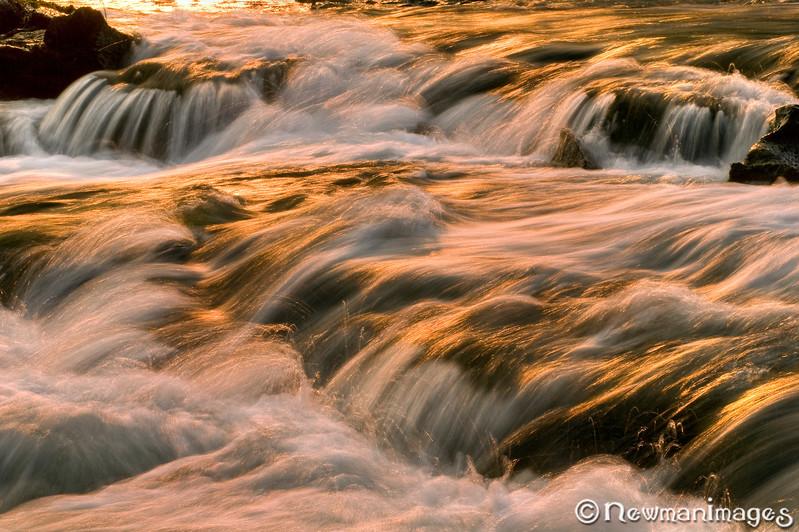 Rogue River Orange