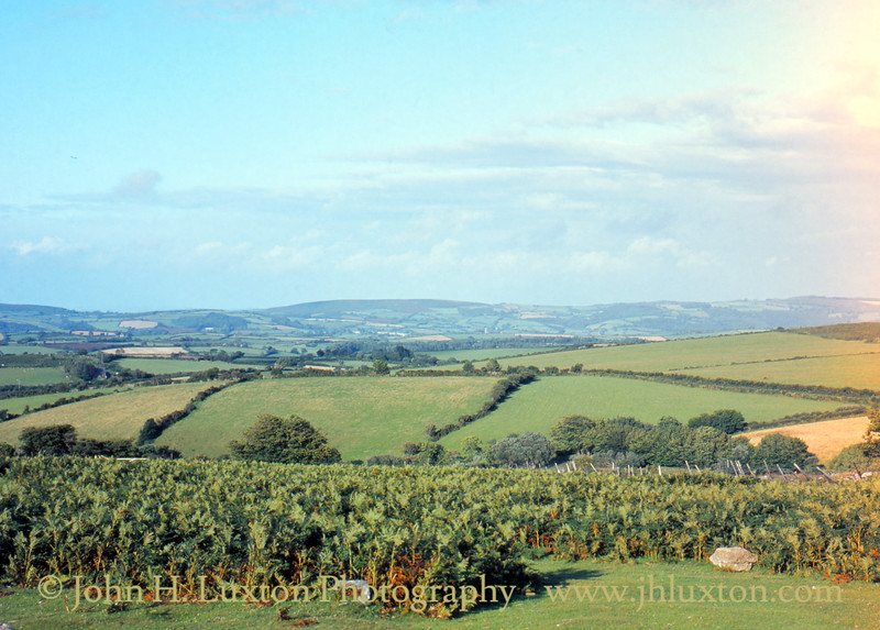 View east from Lettaford Gate - August 1982