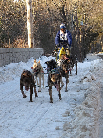 A team heads over the bridge on Cutler Road on its way back to the finish line in the 6-mile race during the Myopia Sled Dog races Saturday. Dan Ryan/Staff photo.