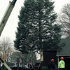 The Danvers Forestry Division delivers the towns Christmas tree. Photo & Video by Mark Lorenz