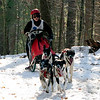 A team approaches Cutler Road during the Myopia Sled Dog races Saturday. Dan Ryan/Staff photo.