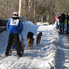 Spectators on Cutler Road follow the action during the Myopia Sled Dog races Saturday. Dan Ryan/Staff photo.