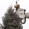 Danvers:<br /> Kevin Donnelly of Danvers Electric Light tops off the Christmas tree with the star in Danvers Square. The tree arrived today.<br />  Photo by Ken Yuszkus / The Salem News, Monday, December 2, 2013.