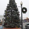 Ken Yuszkus/Staff photo. Danvers: The Danvers Christmas Tree stands in Danvers Square.