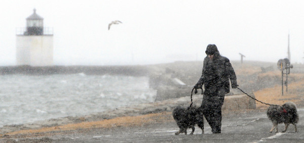 Salem:<br /> Edward Cross walks his dogs Dexter and Penelope in the wind driven snow at the beginning of the snowstorm on Derby Wharf in Salem. Derby Wharf lighthouse is on the left in the distance.<br /> Photo by Ken Yuszkus/The Salem News, Friday, February 8, 2013.