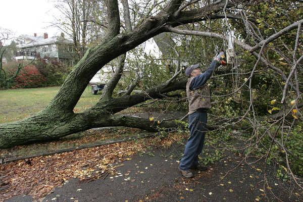 Salem:<br /> Chuck Levesque, mechanic for city of Salem, uses a chainsaw to cut up a downed tree on Fairview Avenue as part of the cleanup after the storm Tuesday morning.<br /> Photo by Ken Yuszkus/The Salem News, Tuesday, October 30, 2012