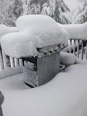 No cookout today, by Vicki Maynard of Peabody