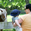 Danvers: Lynda Theriault and her 11-month-old son, Myles, enjoy a quiet moment with a horse at Endicott Park in Danvers. Photo by Mary Catherine Adams/Salem News.<br /> , Danvers: Lynda Theriault and her 11-month-old son, Myles, enjoy a quiet moment with a horse at Endicott Park in Danvers. Photo by Mary Catherine Adams/Salem News.