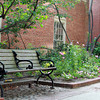 Salem: A garden between the Salem 5 and Cabot Money Management on the Essex St Pedestrian Mall. David Le/Salem News