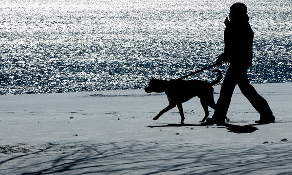 Beverly:<br /> Tania Louis walks her dog Otis across the newly fallen snow at Dane Street Beach on the sunny first day of spring.<br /> Photo by Ken Yuszkus/The Salem News, Wednesday, March 20, 2013.
