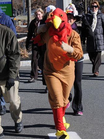 Peabody:<br /> Joanna Filetto, dressed as an oversized turkey, and scores of people from Brooksby Village participated in the annual Turkey Trot at Brooksby Village in Peabody to benefit Haven From Hunger.  <br /> Photo by Ken Yuszkus / The Salem News, Wednesday, November 20, 2013.