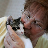 Beverly: Heidi Roberts holds one of her many cats she has taken in to her Beveryl home. Roberts and others have formed a new group, Friends of Beverly Animals, to help stray cats and dogs and hopefully one day open a shelter in Beverly. Photo by Mark Lorenz/Salem News June 11, 2008.
