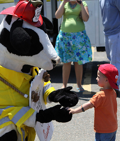 Danvers: Dylan DiFilipo, age 2, of Lynn is greeted by the Chick-Fil-A cow at the Touch-A-Truck Day as part of the Danvers Family Festival, held at the Liberty Tree Mall Saturday morning. Photo by David Le/Salem News