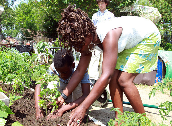 With help from The Greenhouse School Co-Director Julia Nambalirwa-Lugudde, 6th grade student Jordan Olatilu, left, buries a tomato plant in the garden on Tuesday afternoon. David Le/Staff Photo