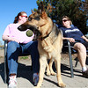 Brock, a Shepard, center, sits in between Ginny Shea, left, of Beverly, and Sherry Grace, right, of Peabody at the Dog Park in Salem on a warm March afternoon. David Le/Staff Photo