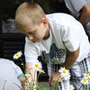 Peabody: Josh Brown, a 5th grade student at the McCarthy Elementary School in Peabody digs up weeds from the wildlife garden his science class created in front of the school on Monday morning. Photo by David Le/Salem News
