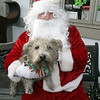 Shubie Symes sits with Santa Claus outside Pawsitively Marblehead on Sunday. David Le/Salem News