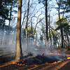 A brush fire behind Danvers High School smolders lightly late Friday afternoon.  David Le/Staff Photo