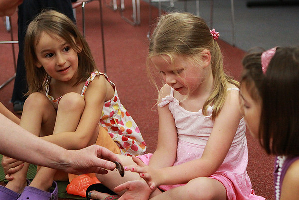 """Beverly: Violet Macheca, 4, watches as Natalie Reynolds, 5, pets a hissing cockroach at Bugworks, a program run by the Beverly Public library for kids that want """"living lessons with crawling creatures"""" on Thursday afternoon. Photo by David Le/Salem News"""