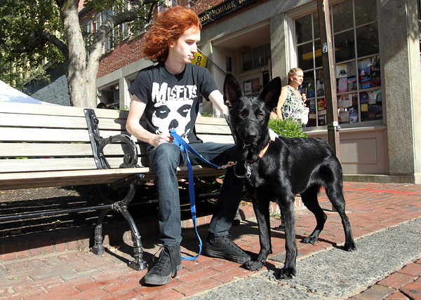 Ed Boehnlein, from Ohio, sits with his dog Faith, a German Shepherd on a bench along Essex St. in Salem on Wednesday afternoon. David Le/Staff Photo