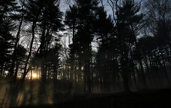 The sun sets in the woods behind Danvers High School following a brush fire on Friday afternoon. David Le/Staff Photo